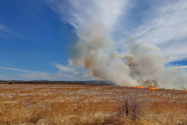 Buschfeuer, Rauchwolke, Rauch, Feuer, Australien