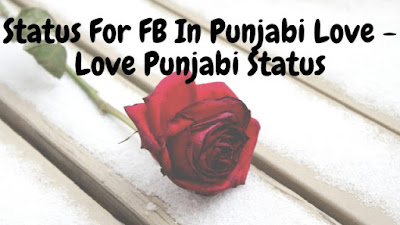 Status For FB In Punjabi Love - Love Punjabi Status