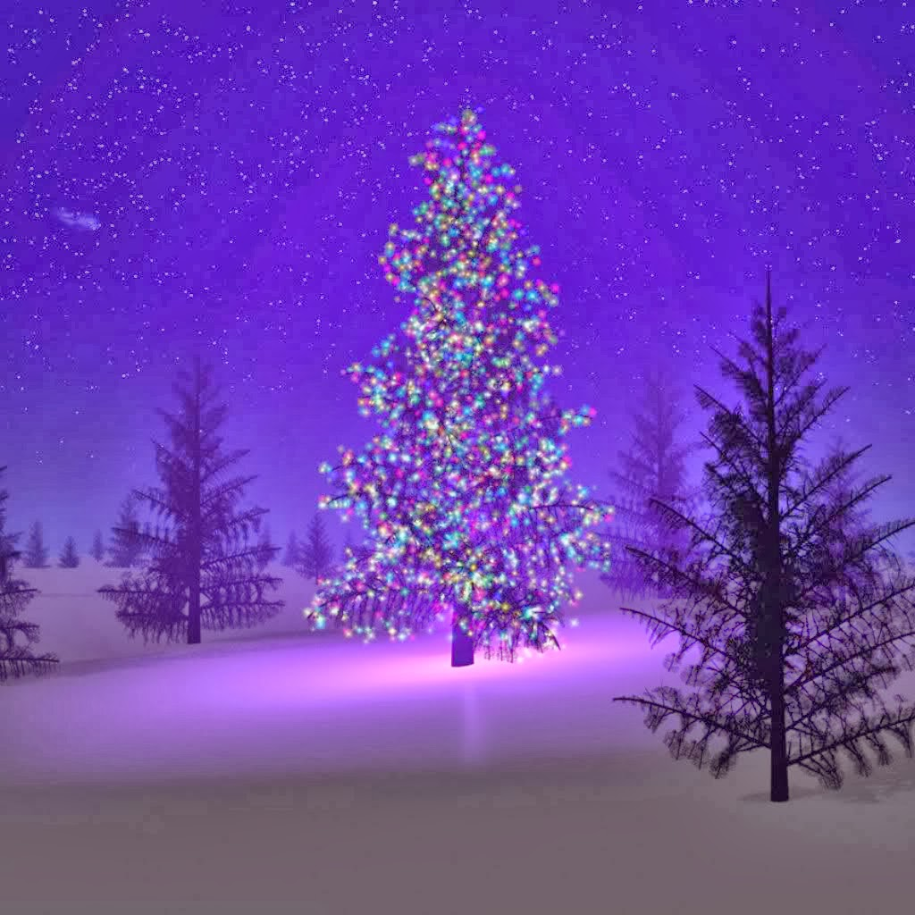 The Night Is Coming: History of the Christmas Tree
