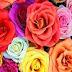 Sevgili İçin 4 Kıtalık Aşk Şiirleri, Sevgiliye Yazılan 4 Kıtalık Aşk Şiirleri