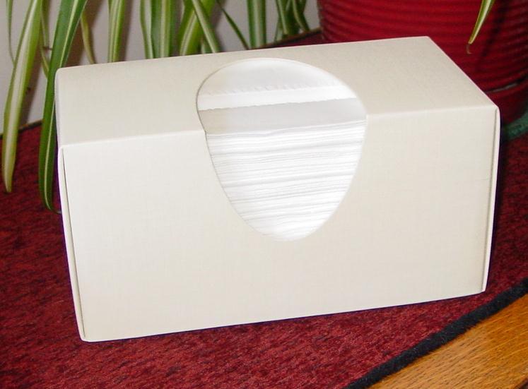 Enjoy A Beautiful Stylish Tissue Box Cover