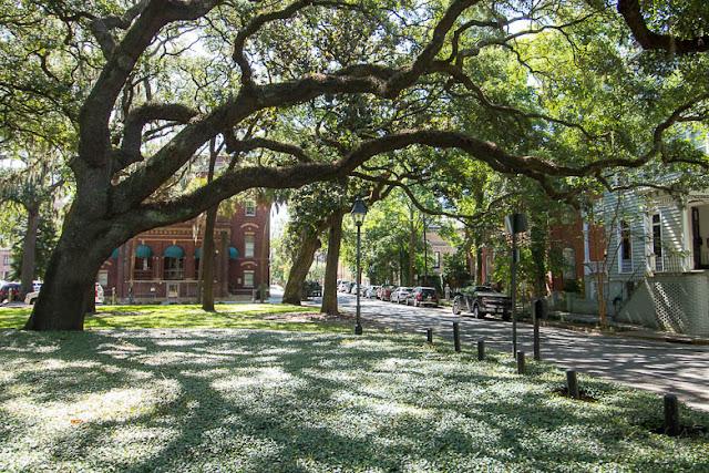 Schönste Straße der USA, Savannah Georgia