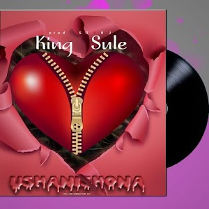 Download Audio | King Sule - Ushanishona