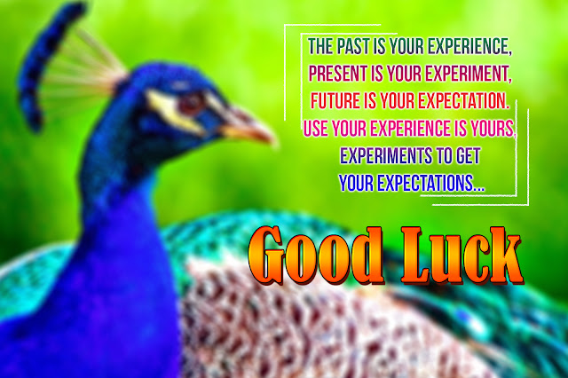 all the best greetings in english-trending inspirational all the best messages, english life changing quotes