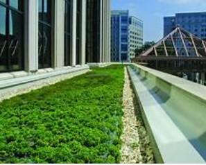 건강한 녹색 건물을 위한 혁신적인 녹색 지붕