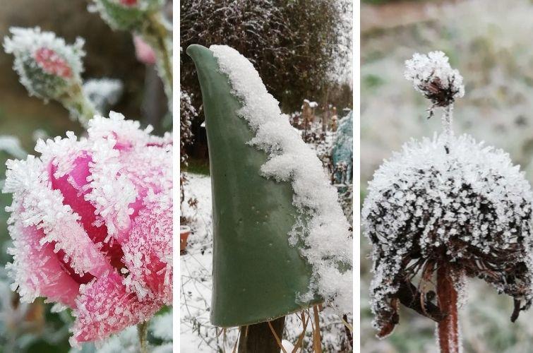 Winterzauber im Garten