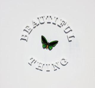 Beautiful Thing lyrics by The Stone Roses