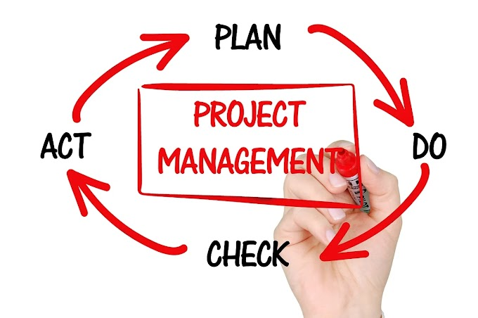 Project Management 101 : How to successfully manage projects?