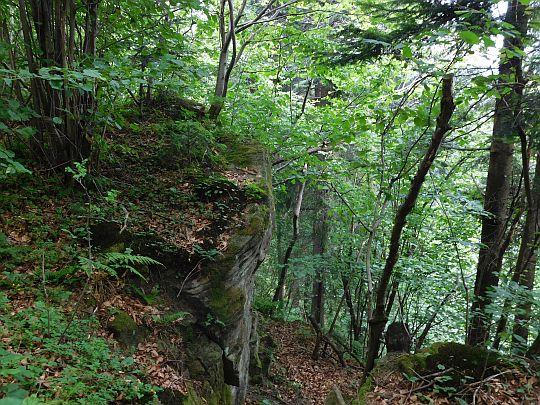 Wychodnie skalne na północno-zachodnim stoku Żurawnicy.