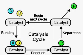 Pengertian Katalisis dan Jenis-Jenis Katalisis
