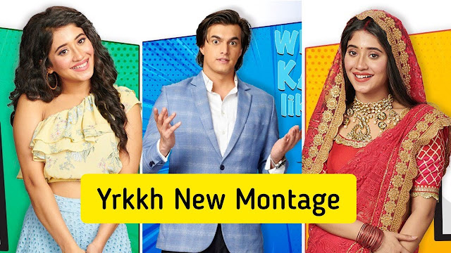 Future Story : Kartik Naira's perfect match to defeat Sita's greedy motive in YRKKH