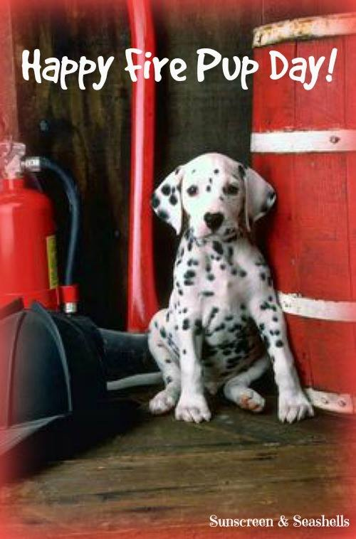 National Fire Pup Day Wishes pics free download