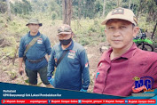 Perhutani KPH Banyuwangi Cek Lokasi Pembalakan liar