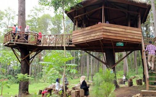 Rumah pohon Bekasi