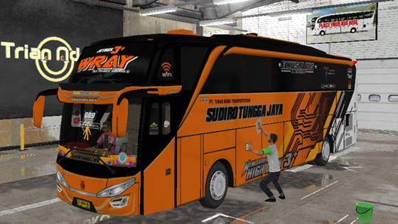Livery Bussid STJ WRAY SHD Original
