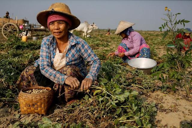 Half of Myanmar's population risks falling into poverty by 2022 -UNDP Newsajk.xyz