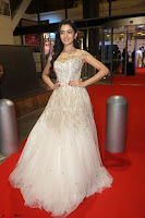 Rukshar Mir designer Anarkali Gown at 64th Jio Filmfare Awards South  2017 ~  Exclusive 082.JPG