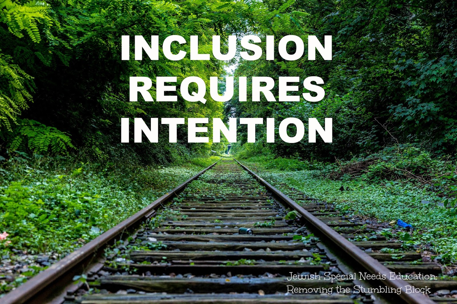 Inclusion Requires Intention; Removing the Stumbling Block