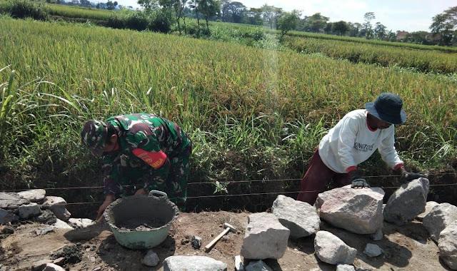 Babinsa Manisrenggo Bantu Pembuatan Talud Untuk Lahan Pertanian