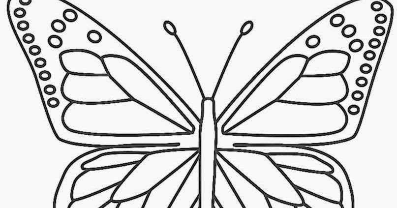 butterfly coloring sheets free coloring sheet