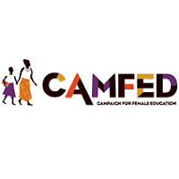Job Opportunity at CAMFED, Finance Officer