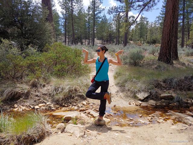 Women Hiking Pants - Roll-up