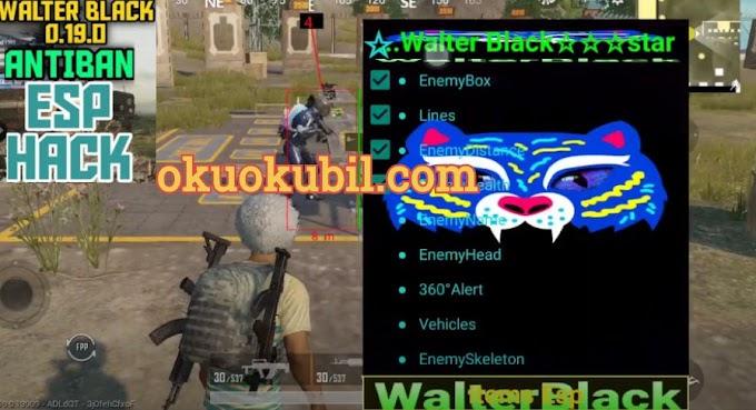 Pubg Mobile 0.19.0 Walter Black ESP 100% Safe No Root Hileli 2020