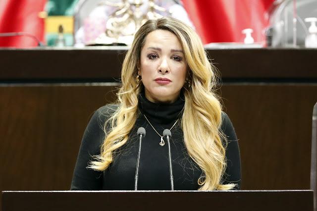 Elemental, que autoridades apliquen medidas sanitarias más estrictas en los pasos fronterizos terrestres: Claudia Domínguez