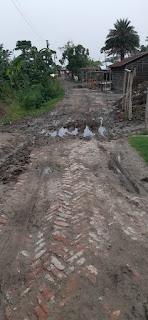 brick-road-purnia