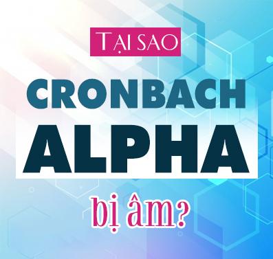 Hệ số Cronbach Alpha bị âm