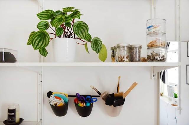 Un hogar de alquiler plantas