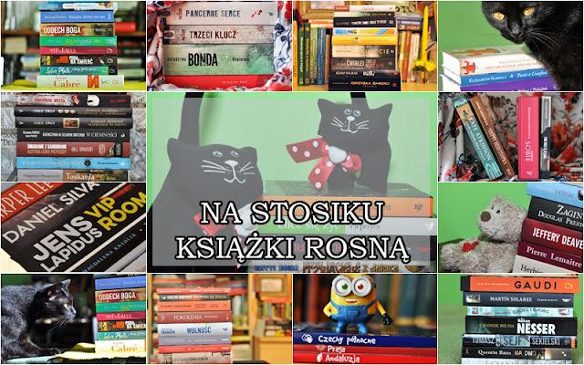 blog książkowy