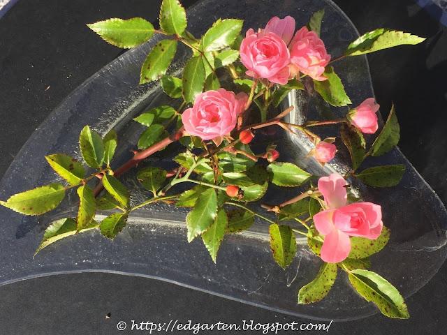 Rosen mit Hagebutten in der Herzvase