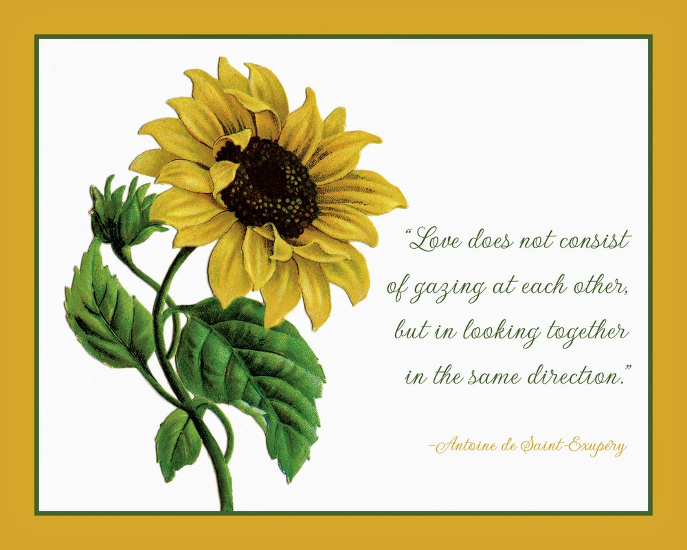 The Yellow Wallpaper Important Quotes Happy Quotes About Sunflowers Quotesgram