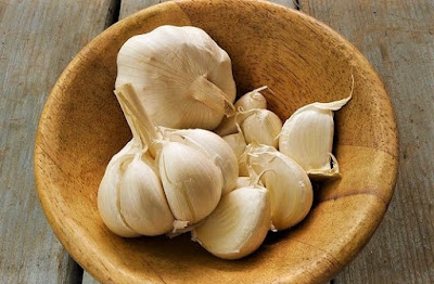 Health Benefits of Garlic | ProHealthshine.Com