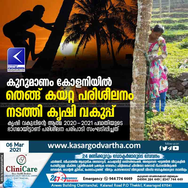 Department of Agriculture conducts coconut climbing training at Kurumanam Colony