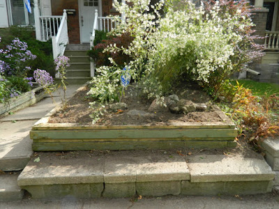 Roncesvalles Toronto Front Yard Fall Cleanup After by Paul Jung Gardening Services--a Toronto Gardening Company