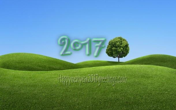 Happy New Year 2017 Nature Pics Wishes