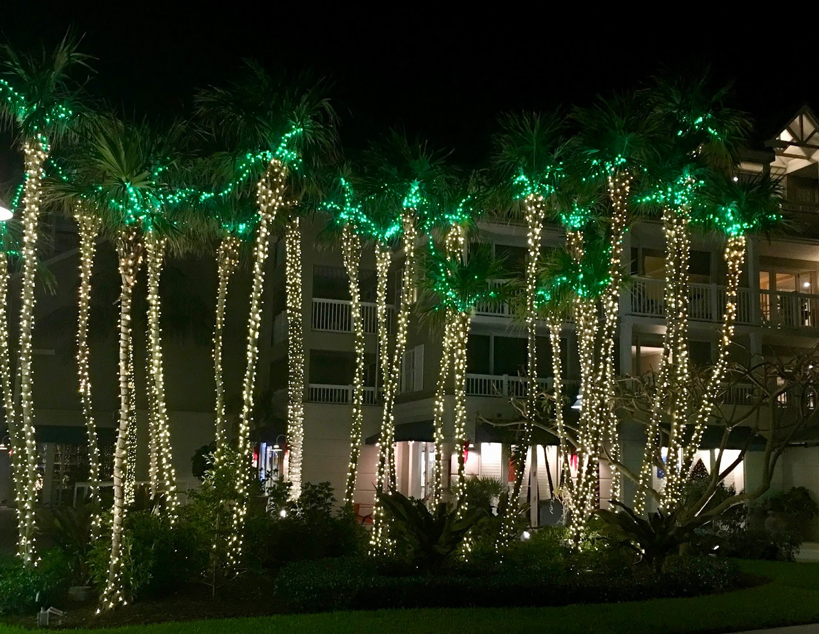 Jungle Red Writers: Christmas in Key West