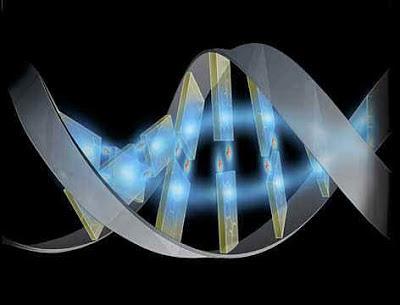 Genoma y biologia