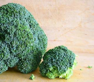 dwa kawałki brokuł na jasnym tle