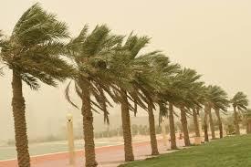 الأرصاد تحذر في نشرة خاصة من أمطار رعدية و رياح قوية  تصل سرعتها إلى 85 كلم/س بعدد من أقاليم المملكة.