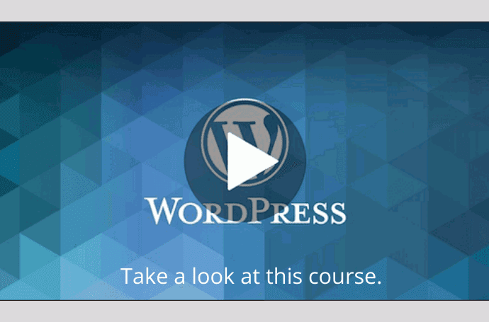 The Complete WordPress Website Business Course - wordpress course udemy