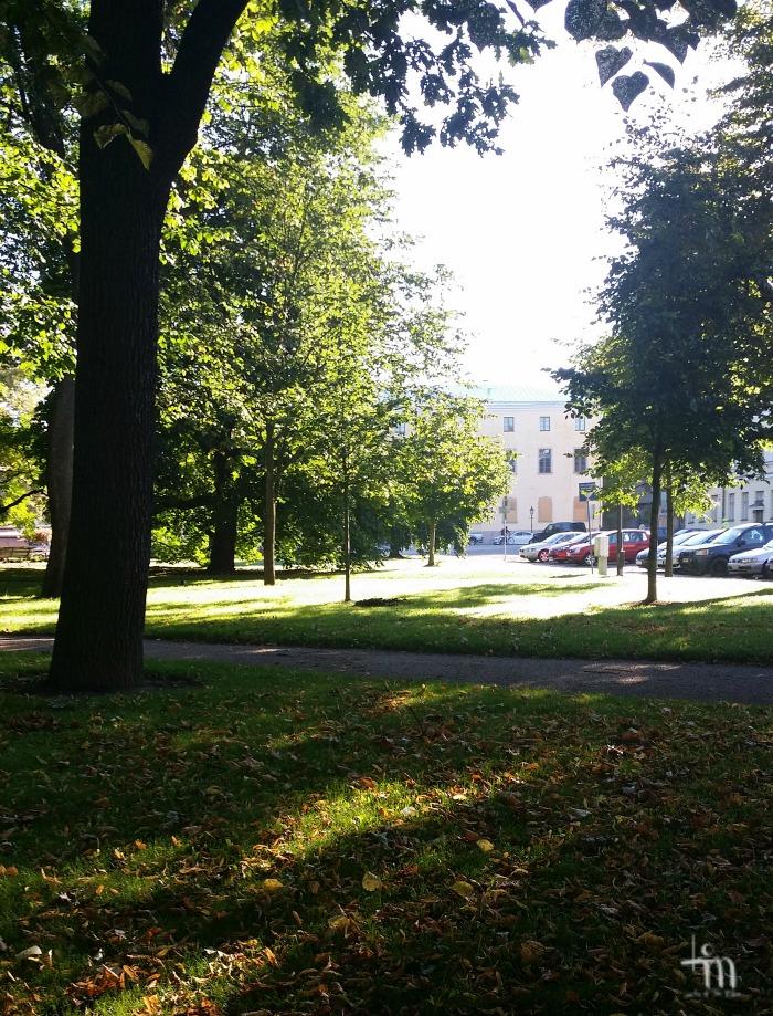 Turun Tuomiokirkkopuistikko syksyllä