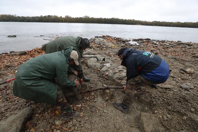 Dry Danube reveals hidden treasure in Hungary