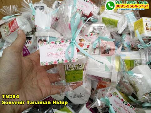 Toko Souvenir Tanaman Hidup