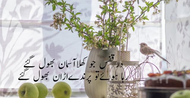 2 lines urdu shayari in english