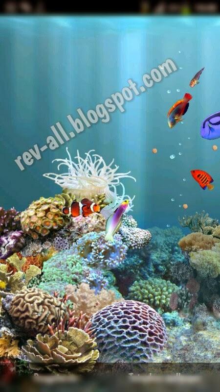 Android: aniPet Aquarium Live Wallpaper, aquarium di wallpaper   Reviewku tentang Android