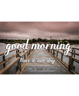 Good morning images by image - tube