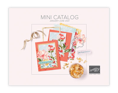stampin' up!, mini catalog, january june mini catalog, stamping supplies, craft supplies, papercrafting, rubber stamping, scrapbooking, paper crafts, handmade cards, cardmaking, nicole steele, the joyful stamper, independent stampin' up! demonstrator, pittsburgh pa